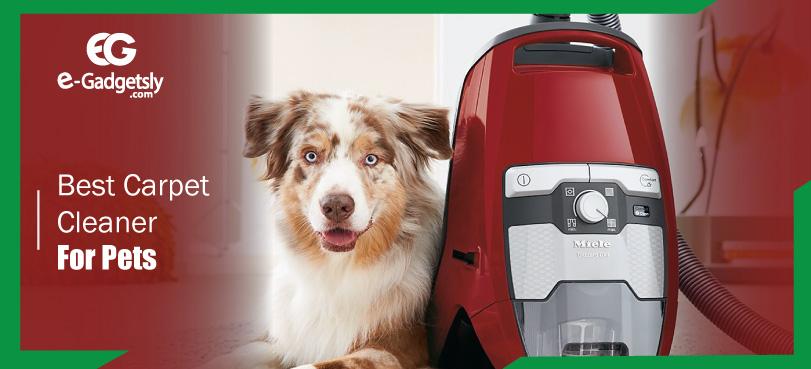 Best-Vacuums-for-pet
